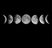 Phases of the Moon by thereallifeznt