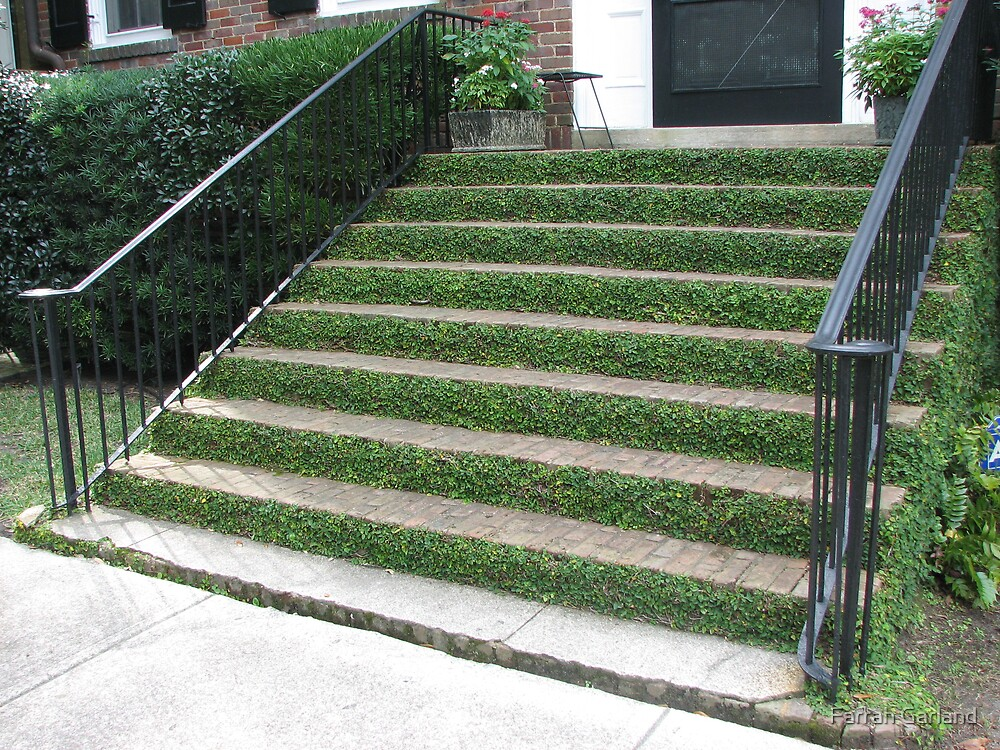 Ivy stairs 1 by Farrah Garland