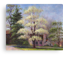 Clouds of Spring Canvas Print