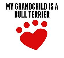 My Grandchild Is A Bull Terrier Photographic Print