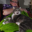 Tabby cat on couch with owner by turniptowers