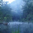 Faerie Mist by Nathalie 2day