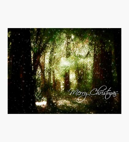 A White Christmas Photographic Print