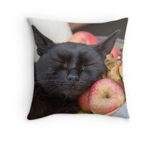 black cat on old barrel Throw Pillow