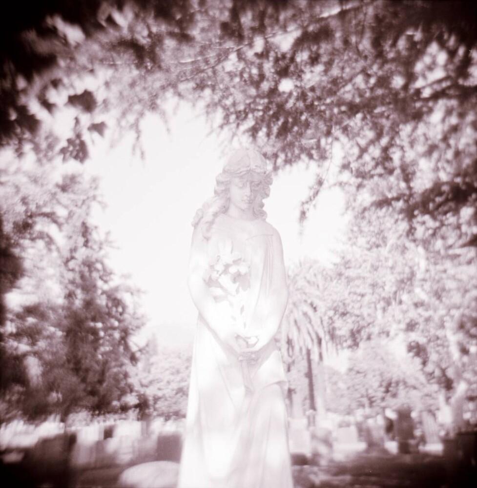 Angel by cass71898