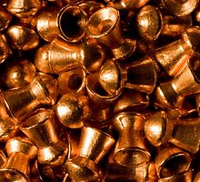 Coats of Copper by Otto Danby II
