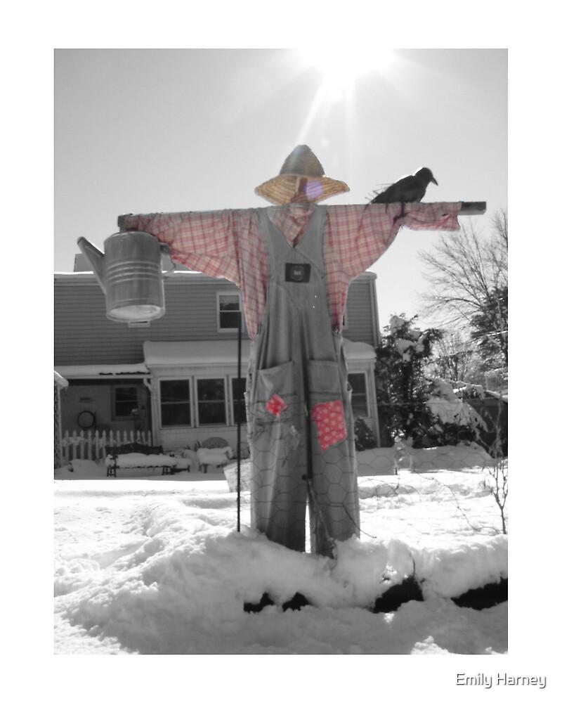 Snowy Crow by Emily Harney