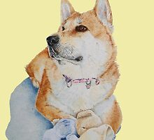 cute red Japanese akita dog portrait realist art  by pollywolly