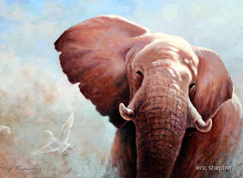 Wild bull  (Original Sold) by eric shepherd