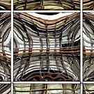 Reflex by Robert Meyer