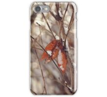 Fall's Remnants iPhone Case/Skin