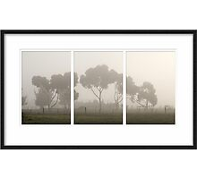 Foggy Mornings... Photographic Print