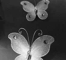 Butterflies by aodena