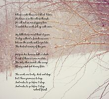 Woods lovely dark and deep by Kimberose