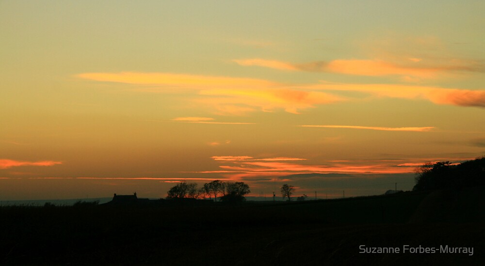 farm silhouette by Suzanne Forbes-Murray