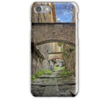 Ancient Way iPhone Case/Skin