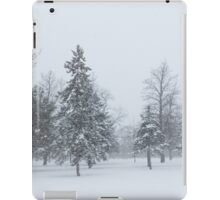 Snowstorm - Tall Trees and Whispering Snowflakes iPad Case/Skin