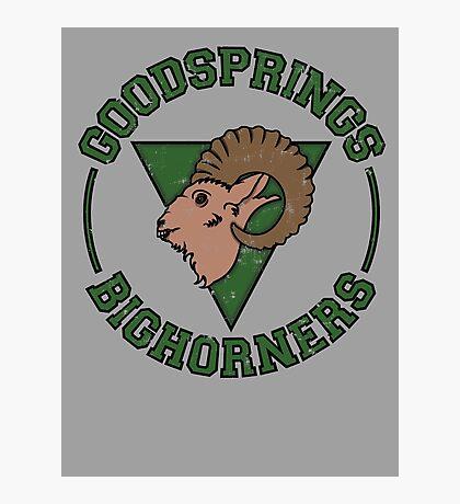 Goodsprings Bighorners Photographic Print
