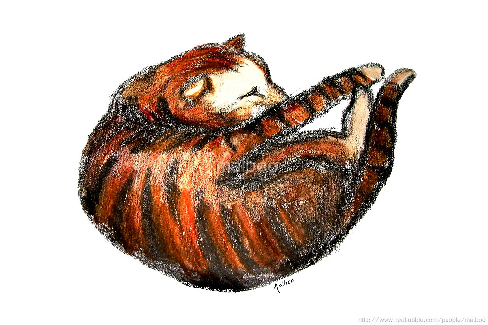 Curled up sleeping lil kitty by maiboo