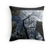 Skyward Bound Throw Pillow