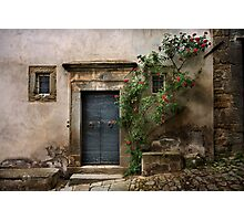 Facade with roses Photographic Print