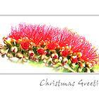 Australian Christmas Card by Lorraine Creagh