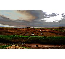 Modified Sea Shore - Dingle Bay Photographic Print