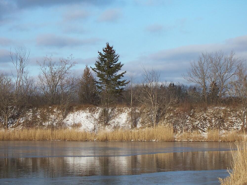 Freezing Pond by Gene Cyr