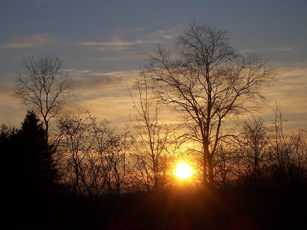 Maine's Setting Sun by Gene Cyr