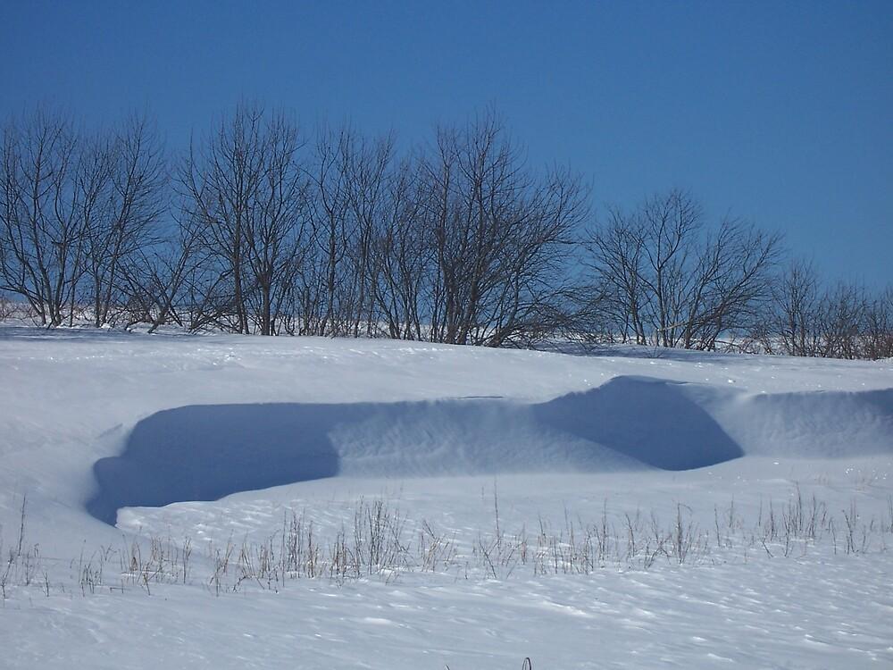 Winter Hilltop by Gene Cyr