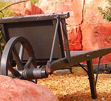 Wheel Barrow by Terry Best