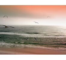 Sunset on the Seashore Photographic Print