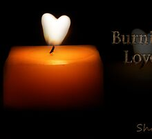 Burning Love! by shall