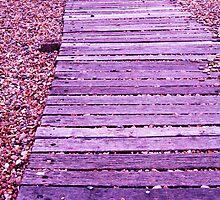 Boardwalk to ....?? by Sara Wiggins