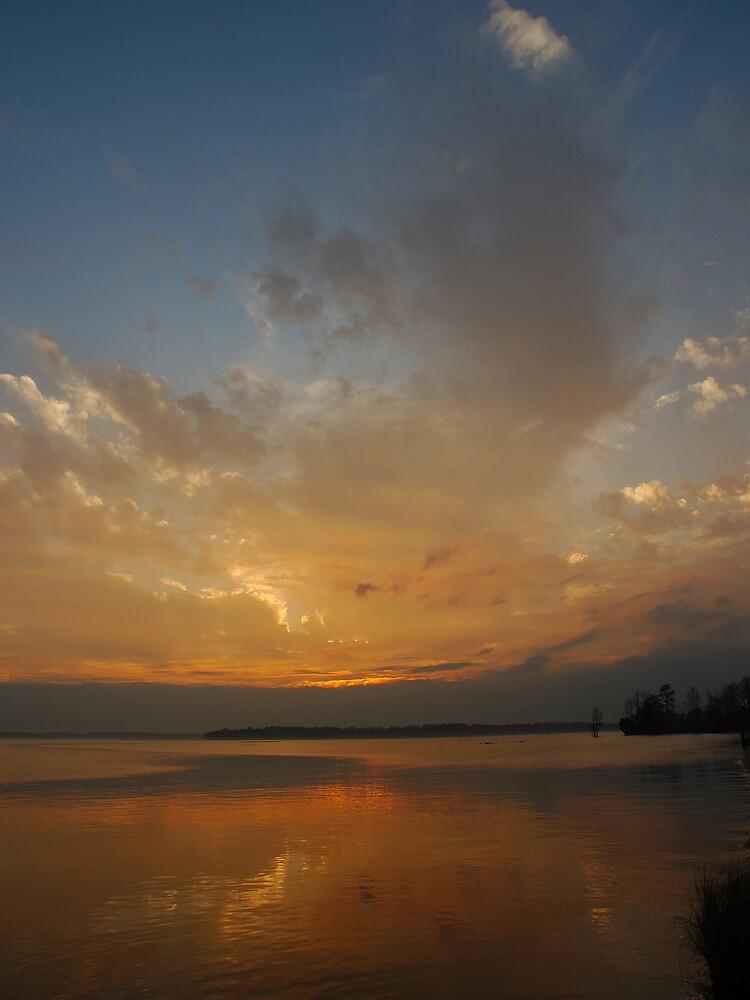 Island Reflections by David Linkenauger