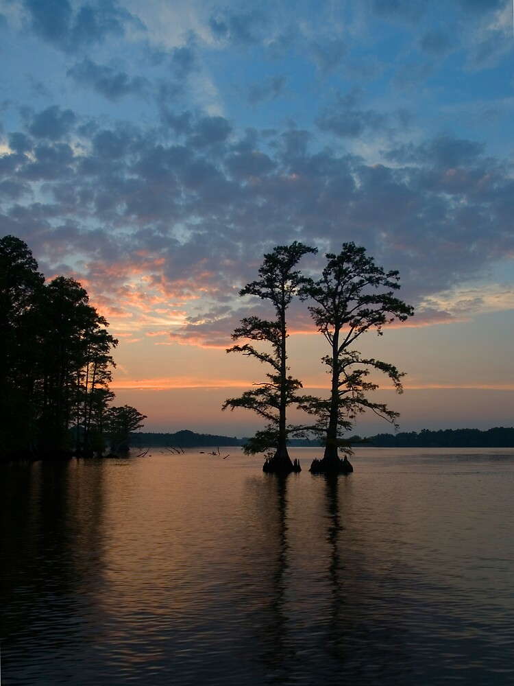 Chickahominy Couple by David Linkenauger