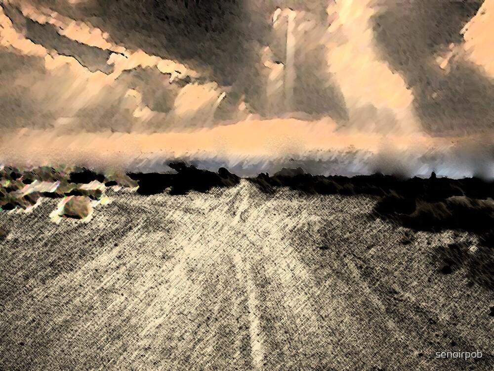 crossed roads by senoirpob