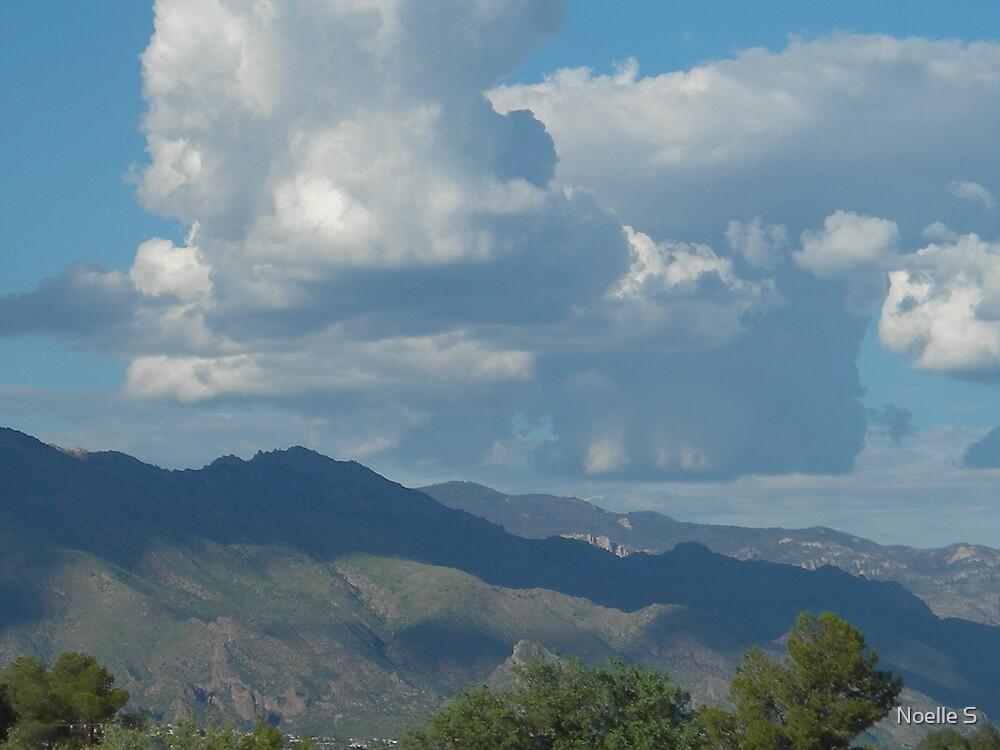 Arizona Mountains by Noelle S