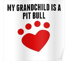 My Grandchild Is A Pit Bull Poster
