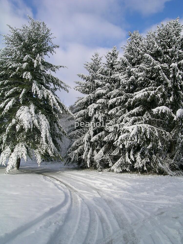 snow,snow by peano12