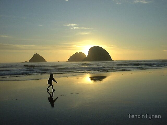 Walk on the Beach by TenzinTynan