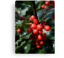 Holly Holidays Canvas Print