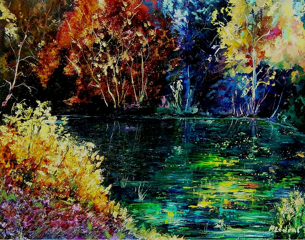 pond 3 by calimero