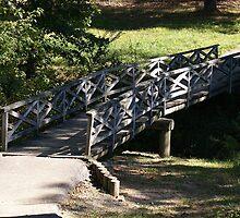 Bridge in the woods by cmooreprints