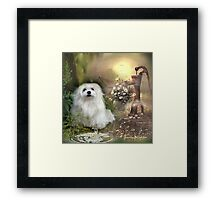 Snowdrop the Maltese at The Wishing Well Framed Print