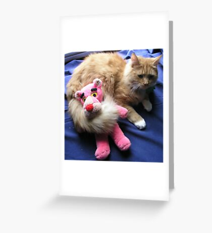 Cat with Toy Greeting Card