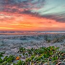 Dawn at Tallow's by Cheryl Styles