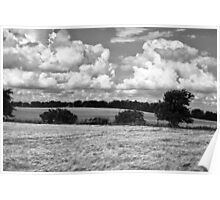 Wheat field in black and white Poster