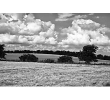 Wheat field in black and white Photographic Print