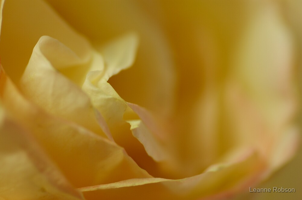 A Touch Of Pink by Leanne Robson